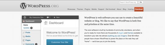 Wordpress Content Management systeem